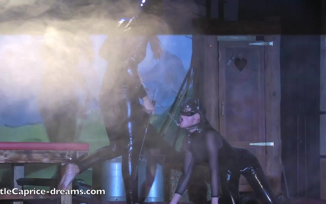 Catwomen lesbo show