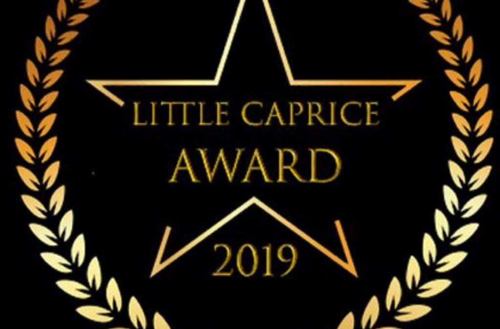 LCD Awards 2019
