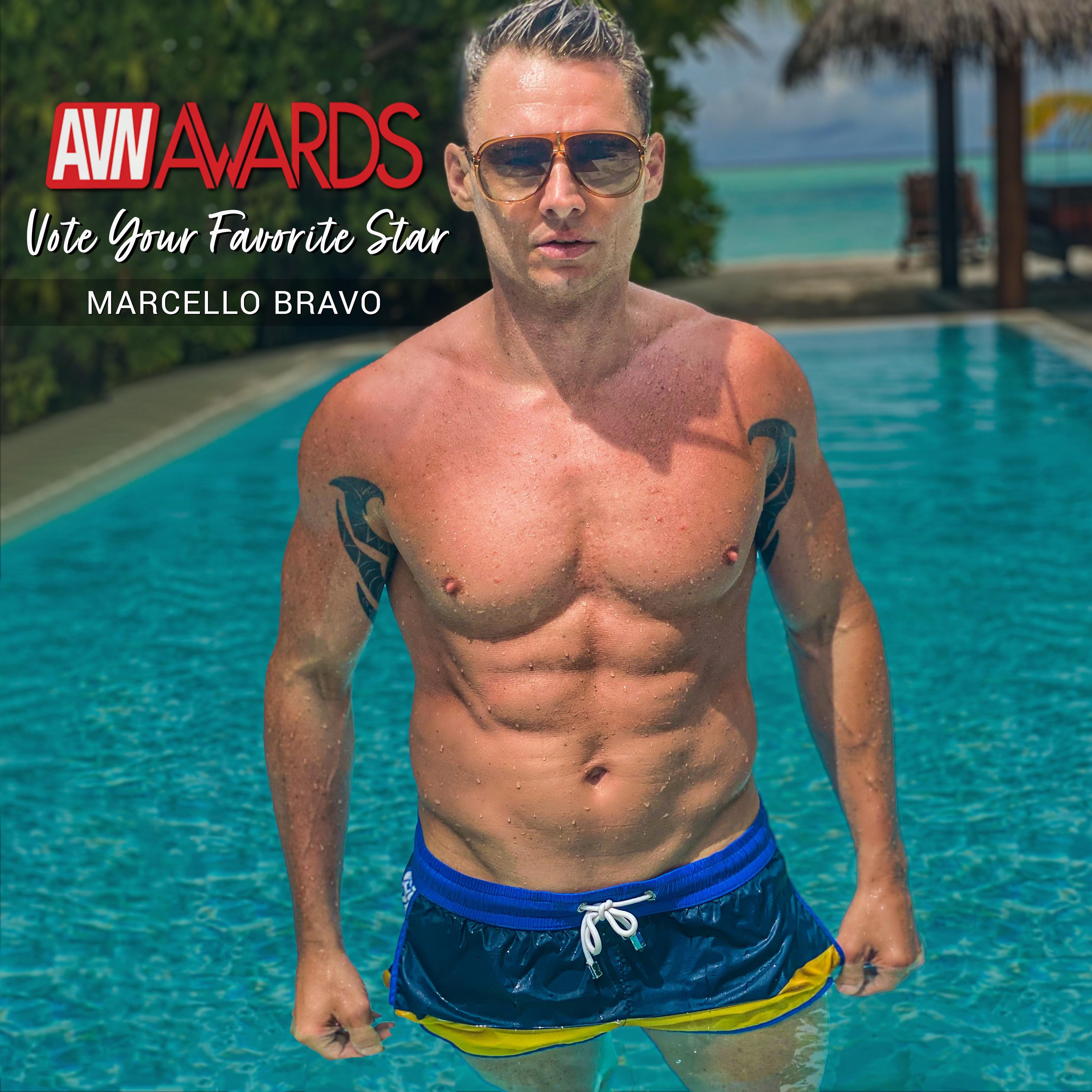 AVN-stars-vote-10