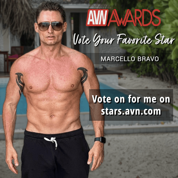 AVN-stars-vote-9