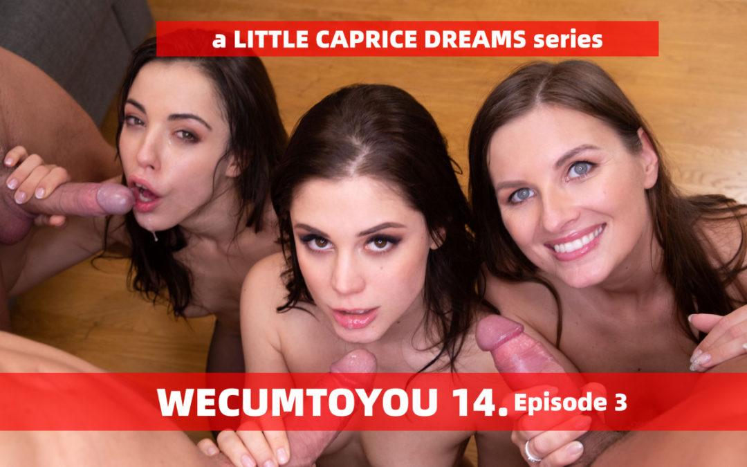 WECUMTOYOU Part 14 – Orgy Episode 3