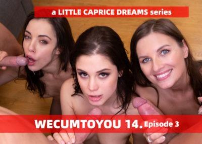 WECUMTOYOU Part 14 - Orgy Episode 3
